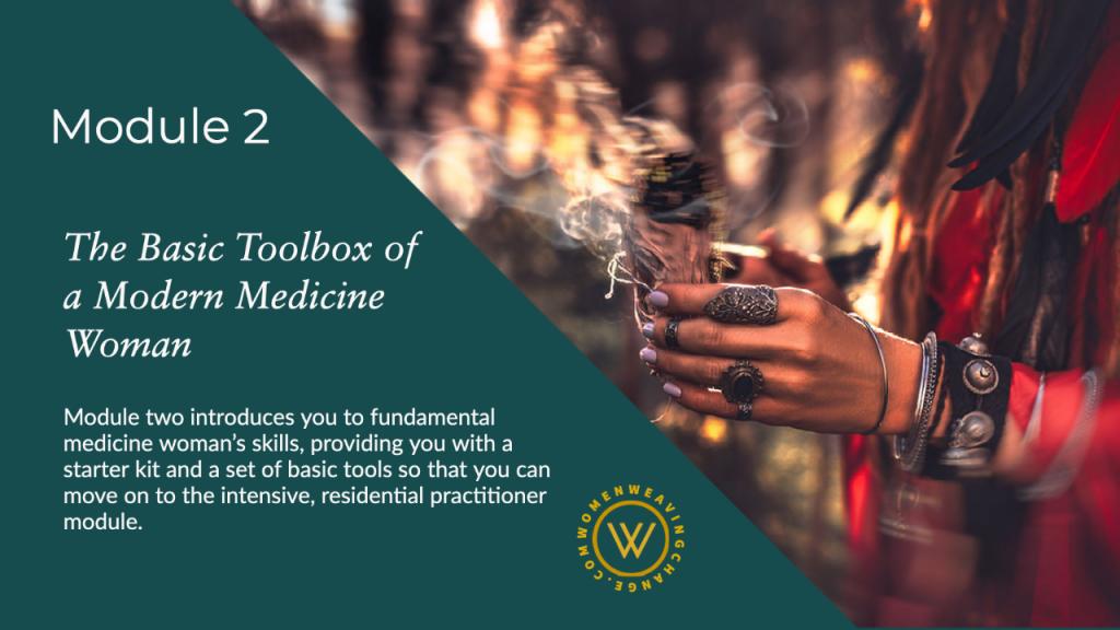 shamanic training course